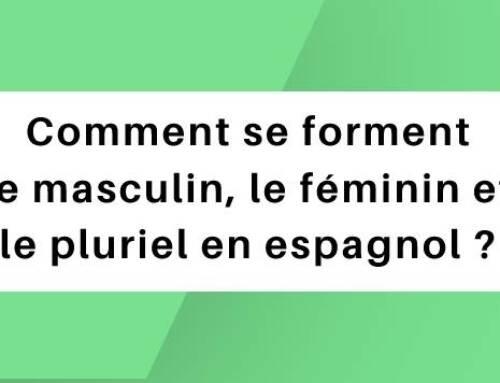 Comment se forment le masculin, le féminin et le pluriel en espagnol ?